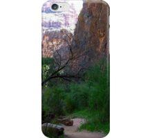 Havasu Canyon Trail iPhone Case/Skin