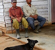 Farm Dog & workers, Vinales, Cuba by buttonpresser