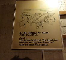COLCHESTER CASTLE INFORMATION by sueottaway