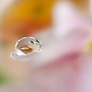 Raindrop Birth by Sarah-fiona Helme