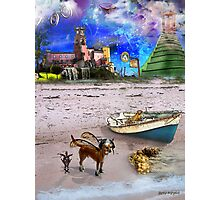 What Do Dogs Dream?  Photographic Print