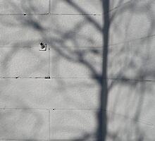 Grey wall by Marjolein Katsma