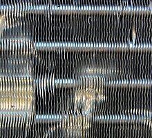 Radiator Lineup by redrob2000