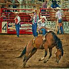Rodeo Days by Barbara Manis