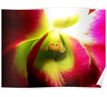 Sensing - A New Perspective on Orchid Life Poster
