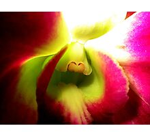 Sensing - A New Perspective on Orchid Life Photographic Print