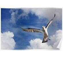 Sky Dancing! Poster