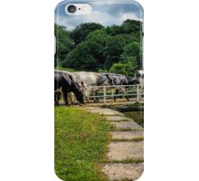 On the way to the parlour iPhone Case/Skin