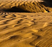 Golden Dunes by IdahoJim