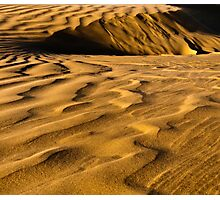 Golden Dunes Photographic Print