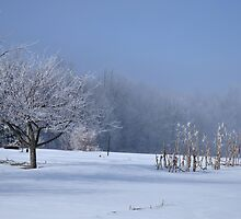 morrow county country frost  by 1busymom