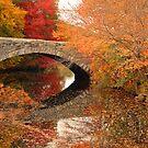The Stone Bridge by John  Kapusta