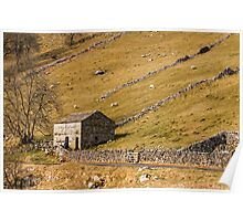 Yorkshire Dales Barn Langstrothdale Poster