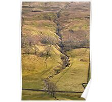 Gill in Littondale  Poster