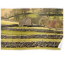 Barn and Drystone Walls Littondale Poster