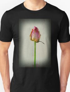 Old Rose on Paper T-Shirt