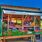 Road Side Fruit Stand by njordphoto