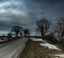 Silverstone Roadside  by Nick Bland