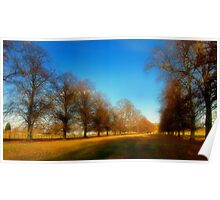 Golden Fields - Cambridgeshire Poster