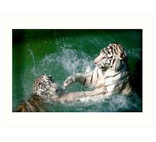 Tigers in play Art Print