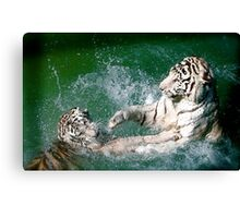Tigers in play Canvas Print