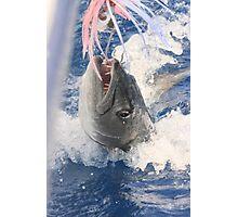 Jaws-Baraccuda Style Photographic Print
