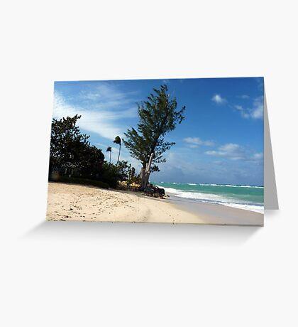 Seven Mile Beach, Grand Cayman, Caribbean  Greeting Card