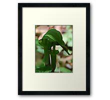 In Tandem Framed Print