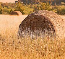 Hay Bail by Nick Conde-Dudding
