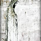 Virgin Mary by kgphoto