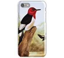 Red Headed Woodpecker Art iPhone Case/Skin