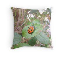Orange Stink Beetle Throw Pillow