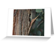 Bark - 10 Greeting Card