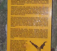 Ghost Bats - A Sign in a Cave - Central Queensland by Gryphonn