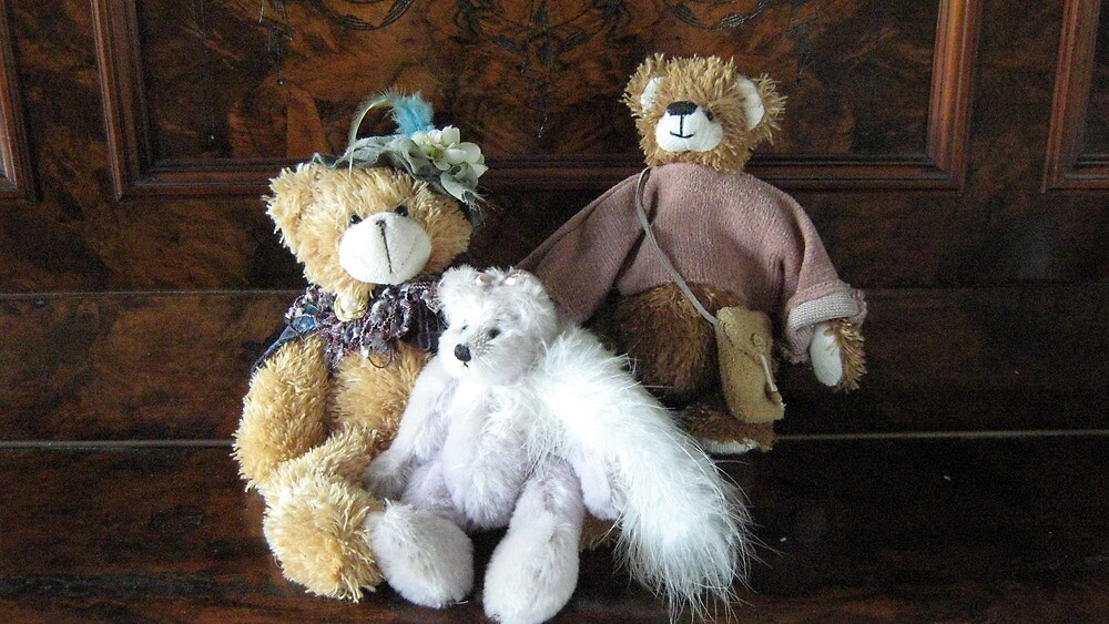 Auntie, Cousin and Baby Teddies. by Mywildscapepics