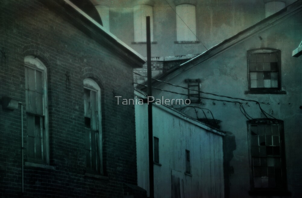 i reach for memories of you in the recesses of my mind by Tania Palermo