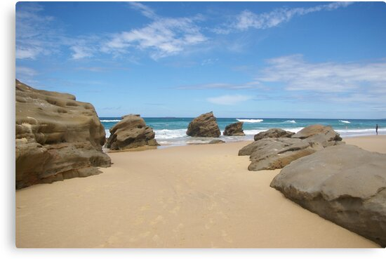 Redhead Beach Newcastle NSW Australia by Bernie Stronner