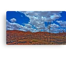 Charred +HDR Canvas Print