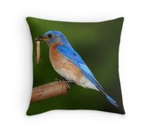 supper time Throw Pillow