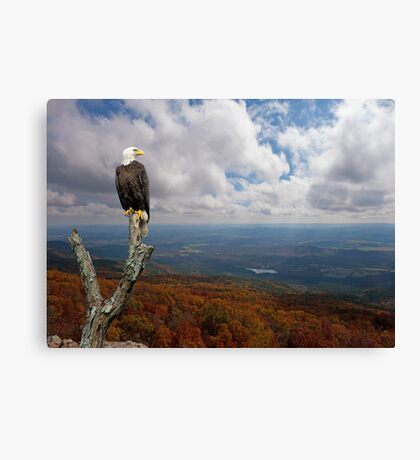 Land of the Free; Home of the Brave Canvas Print