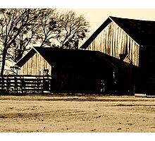 Barns  Photographic Print