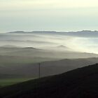 Point Reyes National Seashore by Forrest L Smith