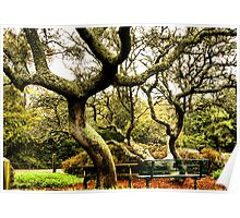 The Park Bench under the Oaks Poster
