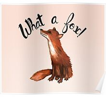 What a Fox! Poster