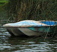 Skiff in a Marsh by rhamm