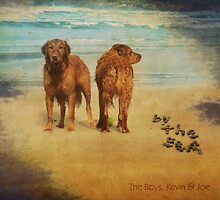 The beach boys by Myillusions
