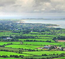 Patchwork countryside of Dingle Peninsula, Ireland by Susan Wellington