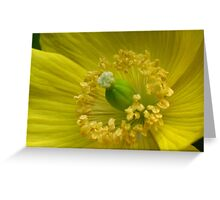 Happy yellow - JUSTART © Greeting Card