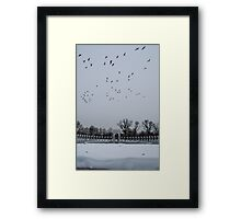 WWII Geese Framed Print