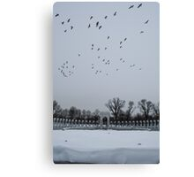 WWII Geese Canvas Print